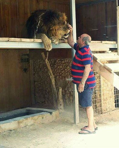 Blog on Life Lifestyle Travel WildLife Park Mtahleb Lion