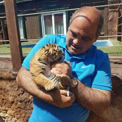 Blog on Life Travel WildLife Park Mtahleb Malta Baby Tiger Cubs