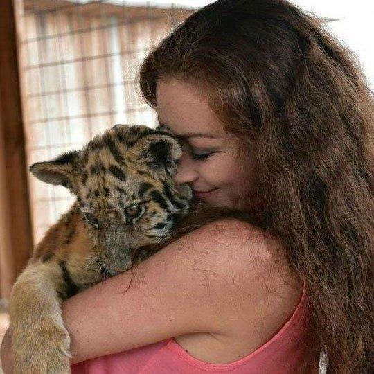 Blog on Life Travel WildLife Park Mtahleb Malta Cub Tiger