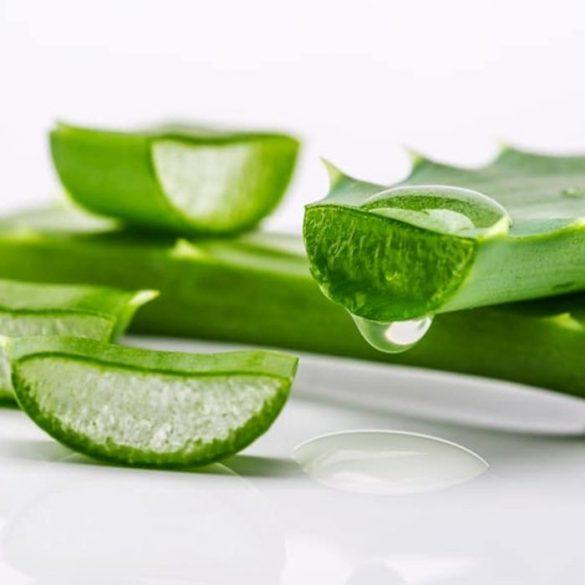 Blog on Life Homemade facial moisturizer recipe aloe vera